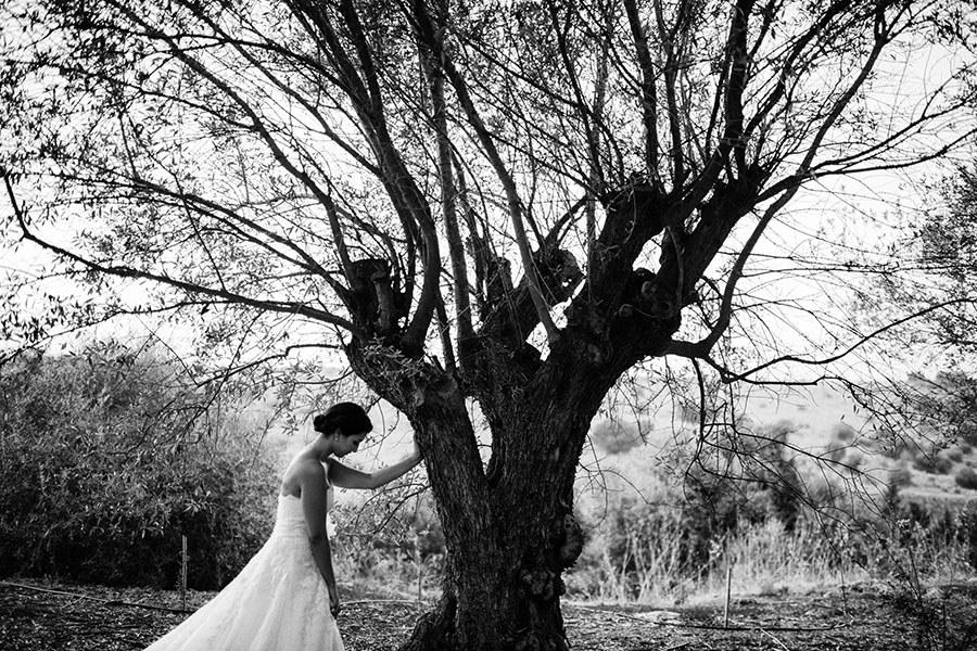 11 Matrimonio Alla Commenda Di San Calogero
